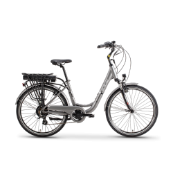 city L grey 250w EcoBike...